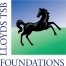 logo-ltsb-foundation-original